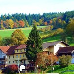 Hotel Gasthof Zur Krone Odenwald-Sterne-Hotel