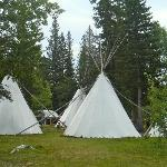 Tee Pees on sight and available to sleep in