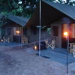 ‪Mahoora Tented Safari Camp Yala‬