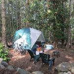Camp Nest Rental