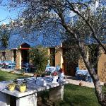 Olive Farm Of Datca Guesthouseの写真