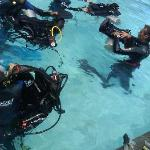 Foto de El Canonero Diving & Beach Resort