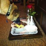 Pet Friendly Room Service - Barkers Beef Tenderloin