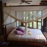 Photo of La Selva Amazon Ecolodge