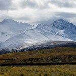 Denali National Park Campgroundsの写真