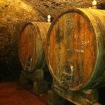  the wine cellar