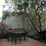 Photo of El Cenote Azul Hostel