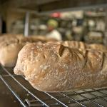 House Made Fresh Bread