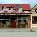St Marys - Famous Purple Possum Wholefoods, Cafe & Gallery