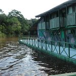 ‪Amazon Geo Jungle Lodge‬