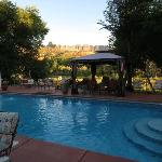Desert Thistle B&B swimming pool