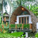 Villa Monyet Batu Karas Hotel