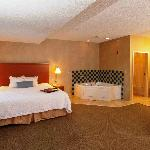 Bilde fra Hampton Inn - Detroit / Novi at 14 Mile Road