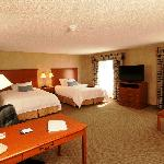 Foto de Hampton Inn - Detroit / Novi at 14 Mile Road