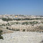 Foto van Mount of Olives Hotel