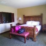 Holiday Inn Express & Suites @ the Vineyards resmi