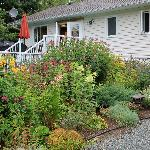 Bilde fra Arbor Bed and Breakfast
