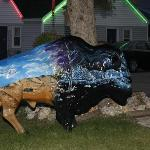  One of the fabulous buffalo statues, this one in front of the motel