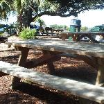 picnic tables in parking lot (with grills)