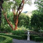 Magnificent Grounds and Gardens