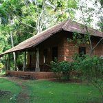 Sarovaram Ayurvedic Backwater Resortの写真