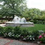 Garden/ Fountain - St. Mary's Cathedral Basilica