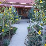 Front of Canyons Escalante