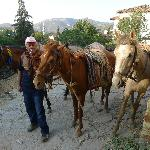 Mehmet, our guide for horseback riding in Sirince