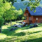 Foto de Linden Tree Retreat & Ranch