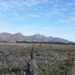 Flinders Ranges - Arkaba Station