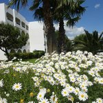 Photo of Golden Tulip Carthage Tunis La Marsa