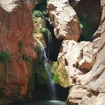 Explore places like Elve's Chasm. Magical waterfalls accesible only to Grand Canyon rafters.