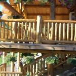 Φωτογραφία: Bobtail Lodge Bed & Breakfast