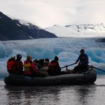 Alaska Denali Day Tours