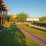  Quails&#39; Gate Winery and Old Vines Restaurant
