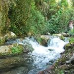  Wildwasserschlucht im Cileto