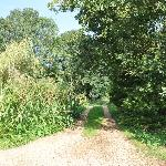  Driveway to Abbey Farm