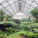 Garfield Park Conservatory