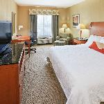 Take advantage of our spacious and well appointed King Guest Rooms.