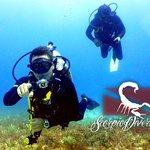 Scorpio Divers Private Tours