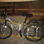 2 mountain bikes and surfboard in garage