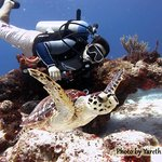 Photo of Always Diving & Water Sports