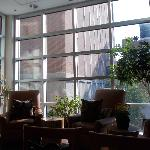 DoubleTree Club by Hilton Hotel Buffalo Downtown Foto