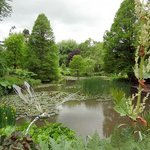 Sir Harold Hillier Gardens