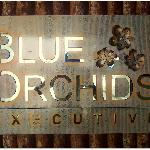 Foto de Blue Orchids Executive