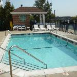 Φωτογραφία: TownePlace Suites Detroit Sterling Heights