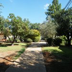 Photo de Kibbutz Moran Country Lodging