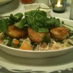 Scallops over vegetable risotto