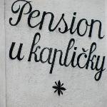 Pension U Kaplicky照片