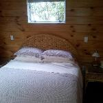 Φωτογραφία: Pauanui Pines Motor Lodge